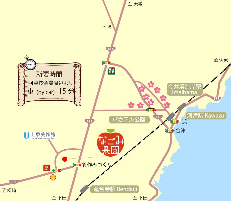 河津桜(かわづざくら)会場からいちご狩りなごみ果園